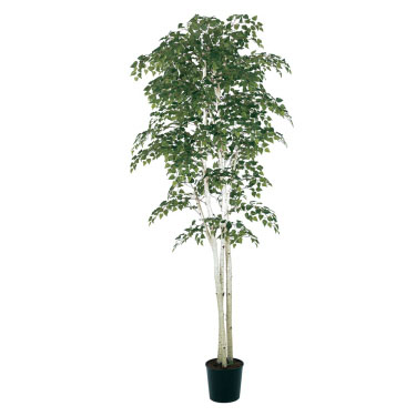 Birch 7' - Artificial Trees & Floor Plants - Artificial birch tree rental