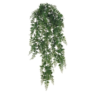 Buckler Fern - Themed Rentals - bulk artificial hanging greenery rental