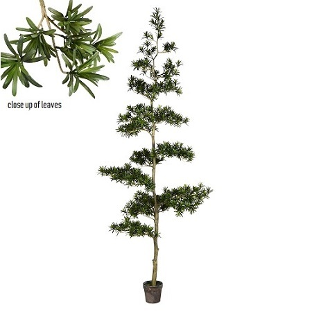 Asian Evergreen 9' - Artificial Trees & Floor Plants - Unique evergreen rentals