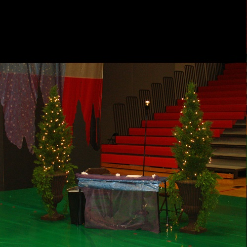 Trees with Planters - Idea Gallery - check in table decoration rentals