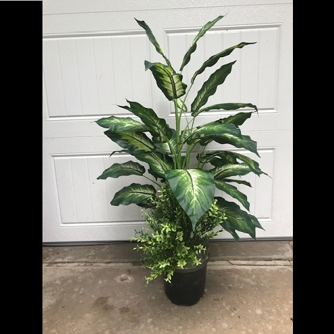 Marble Dieffenbachia One-Of-A-Kind - Artificial Trees & Floor Plants - artificial floor plants for rent