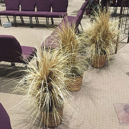 Western Grass  - Themed Rentals - Harvest Parties decor rental