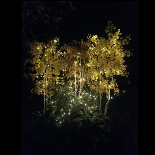 Night Life Fall Trees Rent-A-Woods - Artificial Trees & Floor Plants - Artificial fall trees with lights for outdoor weddings