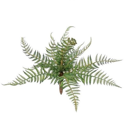 Small Forest Fern - Artificial floral - artificial forest fern for rent