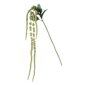 Amaranthus Green  - Artificial floral - hanging stem fillers