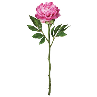 Peony - Beauty - Artificial floral - artificial peony for rent