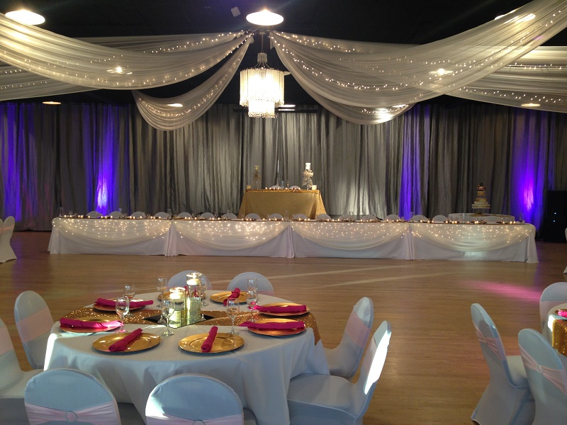 Head Table Fabric & Lights Idea 16+ People - Events & Themes - Elegant Wedding ideas in Minnesota