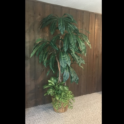 One of a Kind Palm-like Artificial - Artificial Trees & Floor Plants - 8 foot artificial expo booth tree rental