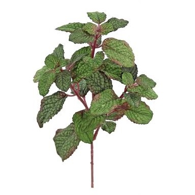 Mint Leaf Stem - Artificial floral - artifical mint leaf stem for floral arranging