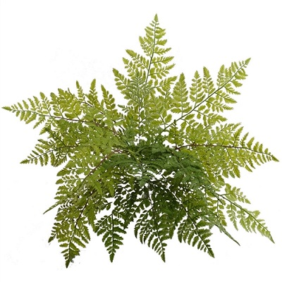Leather Fern Bush 28 - Artificial floral - Plastic ferns outdoor
