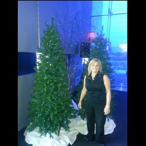 Rent a Li'l Winter Wonderland - Artificial Trees & Floor Plants - Winter wonderland backdrop idea