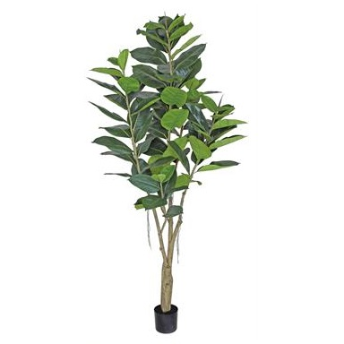Rubber Tree - Artificial Trees & Floor Plants - artificial 7 foot Rubber Tree for rent or sale