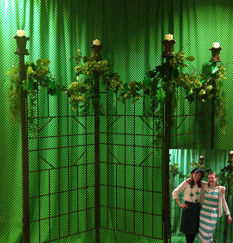 Photo Back Drop Idea - Idea Gallery - Photo Backdrop Idea St Patricks Day