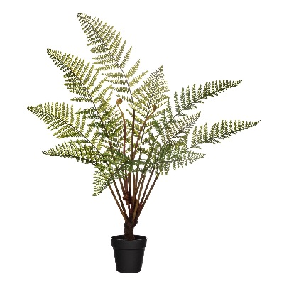 Australian Tree Fern 41 - Themed Rentals - Artificial tree ferns for rent