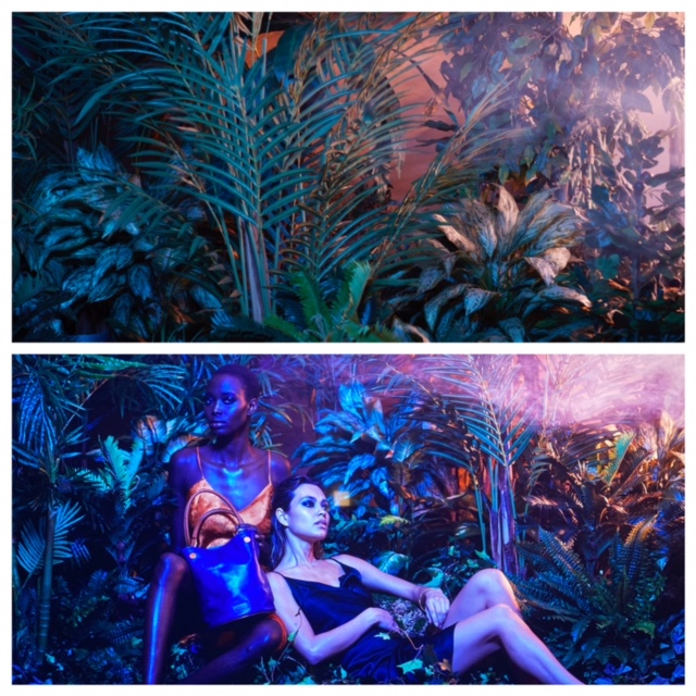 Rent-A-Jungle - Artificial Trees & Floor Plants - Photography Tropical Backdrops