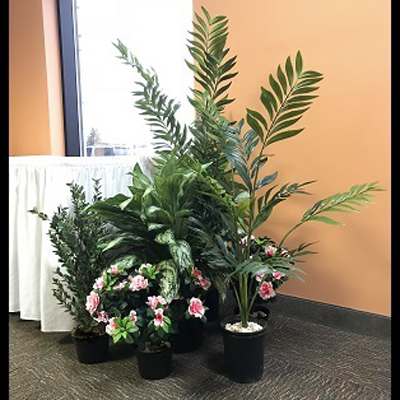 Small Tropical Grouping - Themed Rentals - artificial tropical plants for rent