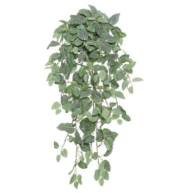 Fittonia Hanging Bush - Artificial floral - hanging artificial greenery ideas